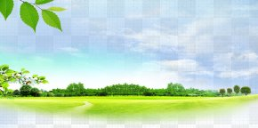 Spring Field - Download Icon PNG