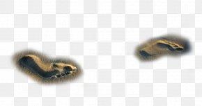 Nice Beach Footprints - Beach Sand System Context Diagram PNG