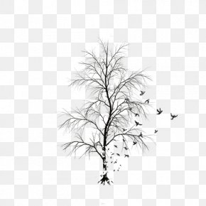 Tree - Twig White Leaf Black Pattern PNG