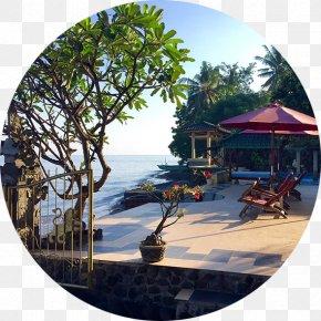Egmond Aan Zee - Lovina Beach Singaraja Hotel Pantai-Mas, The Bali Experience PNG