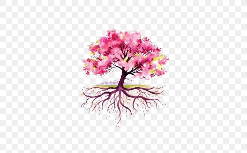 Root Tree Drawing Illustration Png 510x510px Root Blossom Branch Cherry Blossom Drawing Download Free
