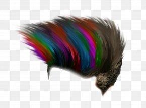 Hair Style - Editing PicsArt Photo Studio Download PNG