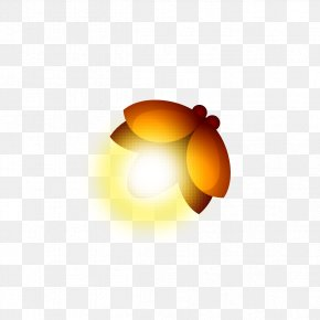 Firefly Light - Insect Clip Art PNG