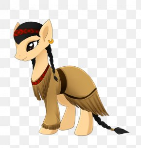Pony Of The Americas - Pony Of The Americas Native Americans In The United States Fluttershy Equestria Daily PNG