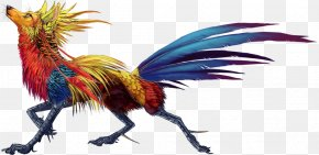 Feather - Rooster Feather Beak Legendary Creature Chicken As Food PNG