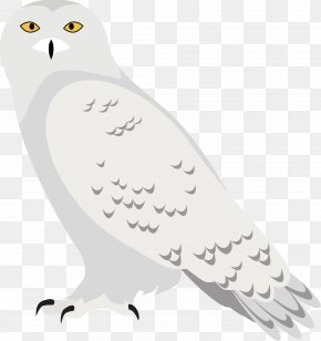 White Eagle Vector - Euclidean Vector Black And White PNG