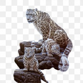 Snow Leopard Mom And Kids - Snow Leopard Cat Tiger Cougar PNG