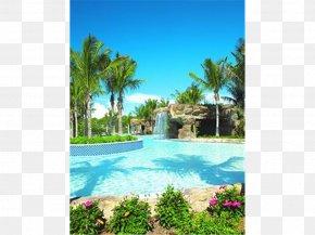 Hotel - Hyatt Residence Club Bonita Springs, Coconut Plantation Hyatt Residence Club Bonita Springs, Coconut Plantation Resort Hyatt Coconut Plantation PNG