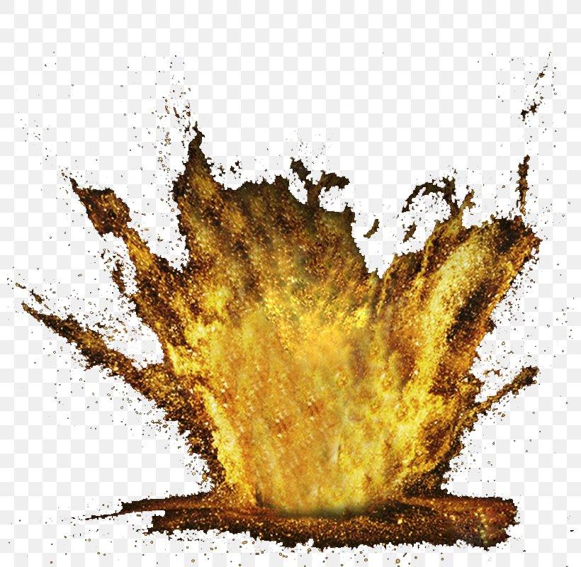 Flame Illustration, PNG, 800x800px, Tree, Illustration, Leaf Download Free