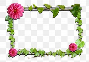 Quadro Border - Borders And Frames Flower Floral Design Picture Frames Clip Art PNG