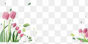 Tulips Flying Picture Material - Tulip Flower Stock.xchng Eid Al-Fitr Clip Art PNG