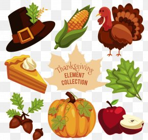 Thanksgiving Decoration Vector - Turkey Thanksgiving PNG