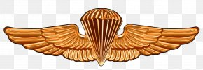 Usmc Military Couples - United States Naval Academy Parachutist Badge Special Warfare Insignia United States Navy SEALs United States Army Airborne School PNG