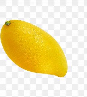 Mango - Mango Pudding Lemon Fruit Vegetable PNG