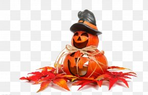 Halloween - Halloween Spooktacular Jack-o'-lantern Trick-or-treating Party PNG