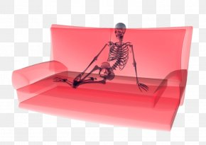 Creative Seat On The Couch Skeleton - Couch Stock Photography Human Skeleton PNG