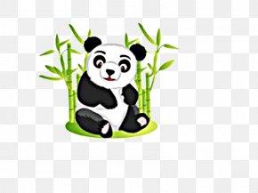 Cute Panda - Giant Panda Bear Red Panda Cuteness Clip Art PNG