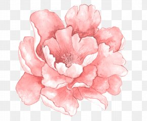 Pink Watercolor Flowers In Full Bloom - Pink Flowers Watercolor Painting PNG