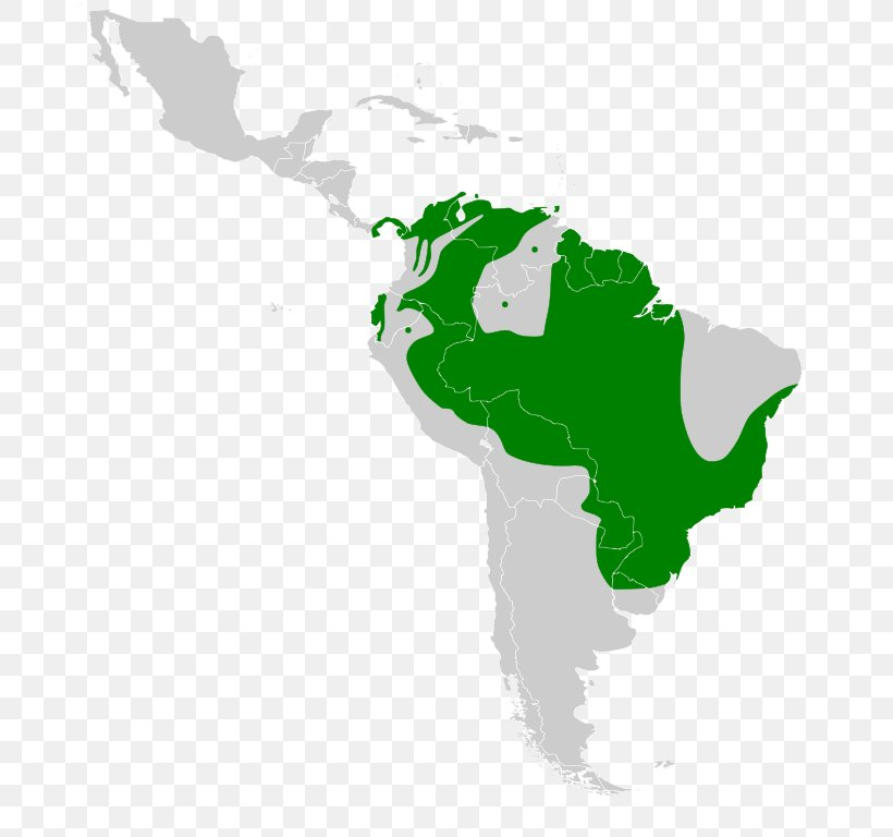 South America Latin America United States Blank Map, PNG ...