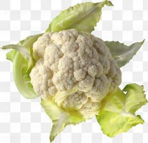 Cauliflower - Cauliflower Cabbage PNG