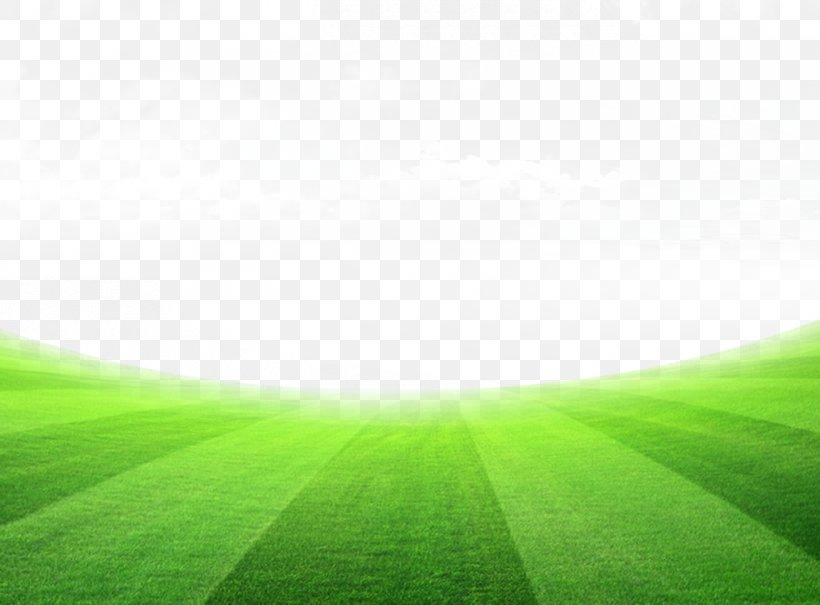 lawn meadow sky wallpaper png 1310x967px lawn computer grass green meadow download free lawn meadow sky wallpaper png
