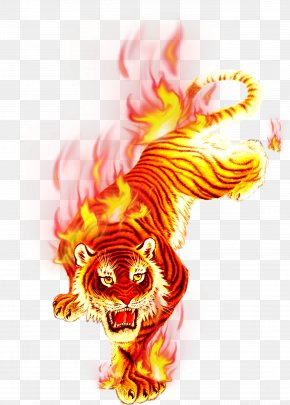 Charcoal Flame Tiger Festival - T-shirt Fire Flame PNG