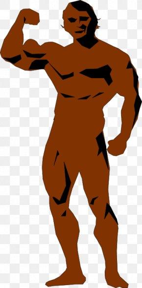 Bodybuilding - Bodybuilding Human Body Clip Art PNG