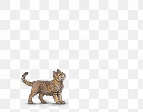Female Lion - Cat Tiger Lion Terrestrial Animal Wildlife PNG