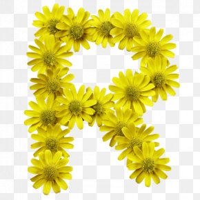 Yellow Flowers - Flower Letter Typeface Typography Font PNG