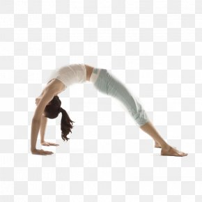 Professional Yoga Instructor Training - Yoga Instructor Asana Wrist Forearm PNG