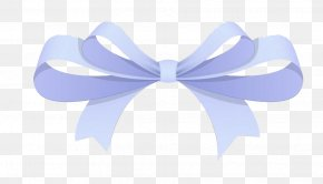Beautiful Bow - Ribbon Shoelace Knot Gift Shoelaces PNG