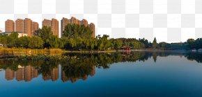 Intoxicating Morning Lake - Photography Download Wallpaper PNG