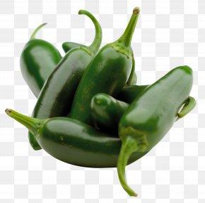 Green Chili Pepper - Chili Pepper Chile Pepper Institute Capsicum Pungency Scoville Unit PNG