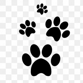 Cat - Cat Dog Paw PNG