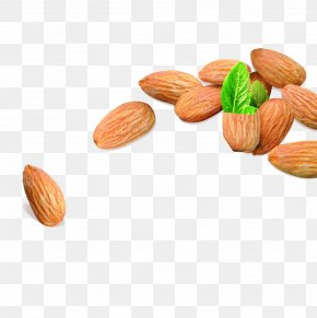 Almond Nuts Picture Download - Macaroon Nut Apricot Kernel Almond Biscuit Vegetarian Cuisine PNG