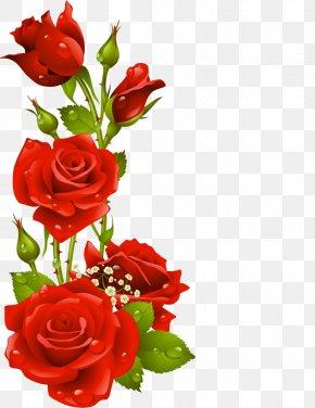Flower - Paper Picture Frames Floral Design Flower Clip Art PNG