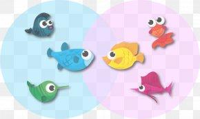 Turquoise Aqua - Fish Aqua Turquoise Fish PNG