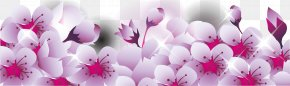 Cherry Border Shading - National Cherry Blossom Festival PNG