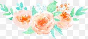 Orange Painted Pattern Of Roses - Garden Roses Beach Rose Flower PNG