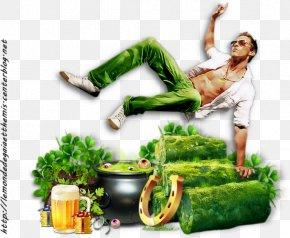 St. Patrick's Day Patricks Day - Saint Patrick's Day Leaf Vegetable Clover Food PNG
