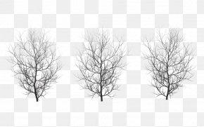 Winter - Tree Winter Branch Clip Art PNG