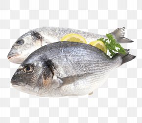 Fish - Fish Flyer Gilt-head Bream Promotion Supermarket PNG