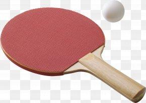 Table Tennis Bat - Table Tennis Racket Table Tennis Racket Rakieta Tenisowa PNG