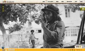 Bob Marley - Bob Marley Museum Rastaman Vibration Bob Marley And The Wailers Legend Album PNG
