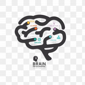 Brain - Human Brain Graphic Design Diagram PNG