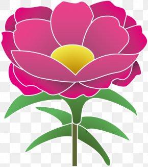 Flower - Garden Roses Moss-rose Purslane Flower Moutan Peony Clip Art PNG
