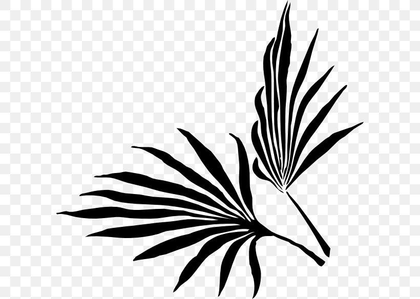 Palm Branch Palm-leaf Manuscript Arecaceae Clip Art, PNG, 600x584px, Palm Branch, Arecaceae, Beak, Bird, Black And White Download Free