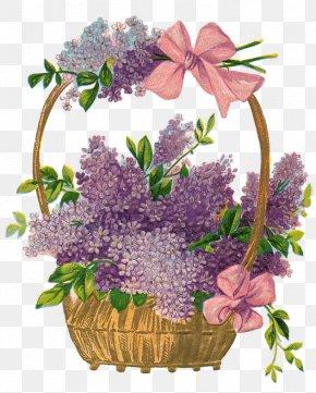 Easter Basket Photo - Easter Basket Clip Art PNG