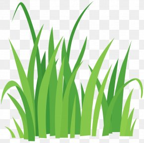 Grass Clip Art - Vector Graphics Clip Art Royalty-free Illustration Image PNG