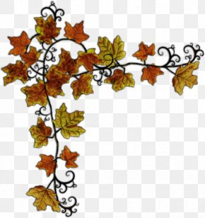 Clip Art Picture Frames Leaf Photography GIF PNG